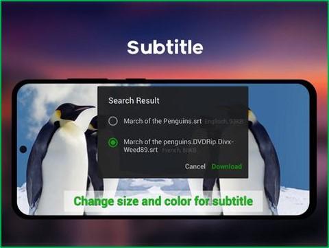 xrecorder subtitle